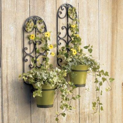 iron hanging wall planter holder from crate and barrel crate. Black Bedroom Furniture Sets. Home Design Ideas