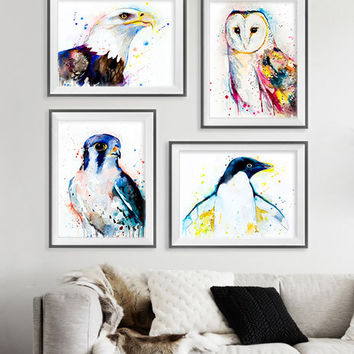 Bald Eagle, Barn Owl, American Kestrel, Penguin watercolor painting print, bird set, animal set, art set, animal art, bird art, bird print