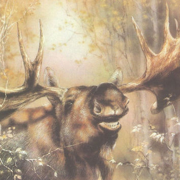 Vintage post card -Elk - Soviet postcard - Russian card - not used