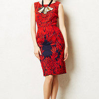 Spicetree Dress