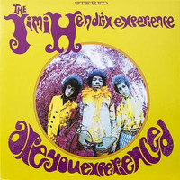 Jimi Hendrix Experience - Are You Experienced (LP)