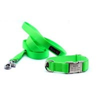 Dog Collar With Personalized Buckle - Laser Lime