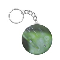 KeyChain: Moment in the Forest Basic Round Button Keychain