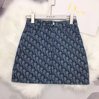 Dior Popular Women Retro Mid Waist Skirt