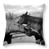 """Affection two horses Throw Pillow for Sale by Ivy Ho - 16"""" x 16"""""""