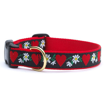 Heart & Flowers Dog Collar