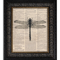 DRAGONFLY Dictionary Art Print