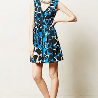 Pearl District Dress by Tracy Reese Blue Motif