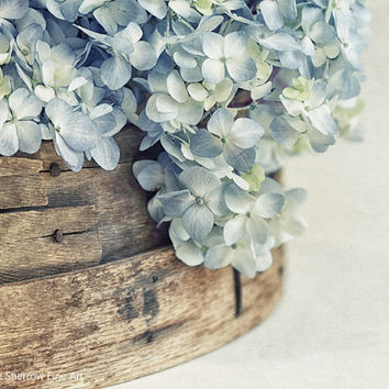 Flower Photography, Shabby Chic Cottage Wall Decor, Country Farmhouse Art Print, Hydrangeas | 'Faded Denim'