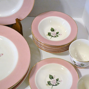 Vintage International D S Co Alliance Ohio Glenwood Dinnerware Set Service for 6 Pink White Rose  PanchosPorch