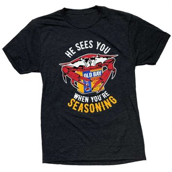 He Sees You When You're Seasoning (Vintage Navy) / Shirt