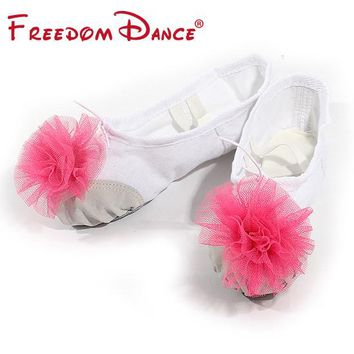 Flowers Decorated Canvas Split Soles Women's Ballet Slippers Soft Sole Girls Ballet Dance Shoes Kids Fitness Shoes Free Shipping