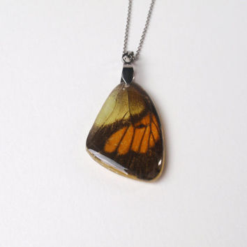 Butterfly wing resin necklace  - Butterfly wing Jewelry, Botanical Jewelry, Pendant Charm, Reiki  charged