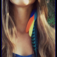 Macaw Dreams, feather, hair, extensions, extension, tropical, parrot , orange, blue, yellow, edm, boho, bohemian, accessories, gypsy, summer
