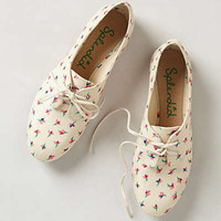 Anthropologie - Nickerie Oxfords