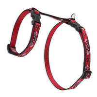 Lupine Wild West Small H-Style Harness for Dogs & Cats (1/2 Inch)