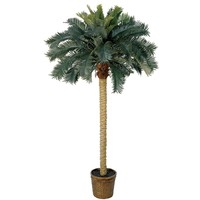 SheilaShrubs.com: 6' Sago Palm Silk Tree 5107 by Nearly Natural : Artificial Flowers & Plants