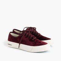 SeaVees® for J.Crew Legend sneakers in velvet
