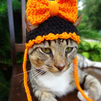 Halloween Hat for Cats and Small Dogs in CUSTOM COLORS -The Big Bow Halloween Hat for Cats- Halloween Hat for Dogs