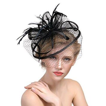 Womens Veil Net Mesh Formal Party Fascinators Hat Yarn Feather Wedding Bride Headdress with Hair Clips for Cocktail Costume