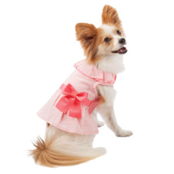 Martha Stewart Pets® Seersucker Dress - Sale - Dog - PetSmart