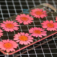 unique iphone 5 case iphone 4 case iphone 4s case Iphone 5s case 5c glitter Dried Dry daisies Pressed Flower Pink Clover Real Flower resin