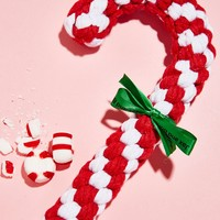 Free People Candy Cane Dog Toy