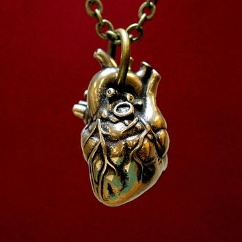 Anatomical Human Heart Pendant Necklace Sculpture by Michael  Doyle - Anatomical Human Heart Pendant Necklace Fine Art Prints and Posters for Sale
