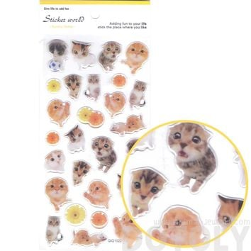 Adorable Baby Kitten Animal Shaped Cat Photo Jelly Stickers for Scrapbooking and Decorating