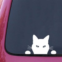 "Cat ""Soon..."" - Car Vinyl Decal Sticker - (7.25""w x 4.5""h) Copyright © Yadda-Yadda Design Co."
