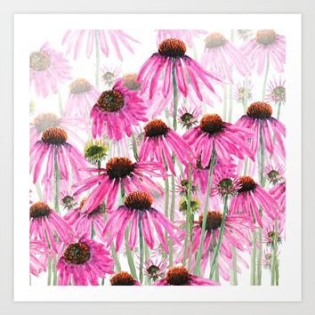 pink coneflower field Art Print by Color And Color