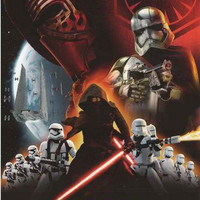 Star Wars Force Awakens First Order Poster 22x34