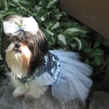 Princess Cinderella inspired Dog Dress/Costume Size Medium/Large
