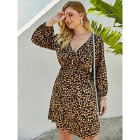 Plus Deep V-neck Leopard Print A-line Dress