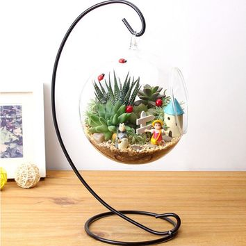 2017 Beautiful Clear DIY Hydroponic Plant Flower Hanging Round Glass Vase Container Household Garden Decorations Popular New