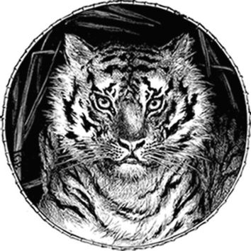 Portrait of a Tiger (Black) Plastisol Heat Transfer