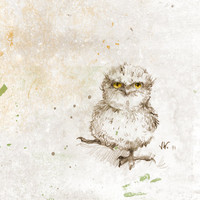 Tawny Frogmouth Chick Bird Owl Digital by RenataandJonathan