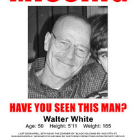 Breaking Bad Walter White Missing Poster 11x17