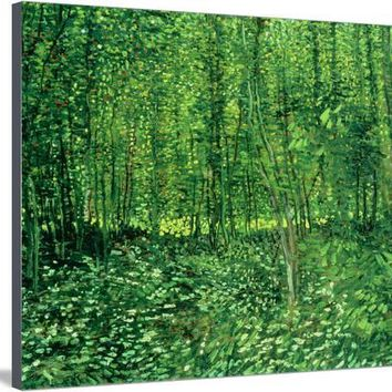Woods and Undergrowth, c.1887 Giclee Print by Vincent van Gogh at Art.com