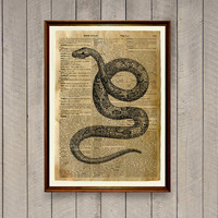 Snake poster Reptile decor Animal print Dictionary page WA595