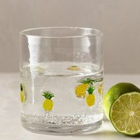 Fruit Wedge Tumbler by Anthropologie