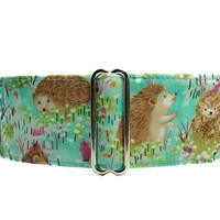 Hedgehog Martingale Dog Collar Greyhound, Aqua Martingale Collar, Hedgehog Dog Collar, Aqua Dog Collar, Greyhound Collar