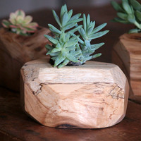 Wood Succulent Planter - Indoor Plant Holder - Reclaimed Wood Planter