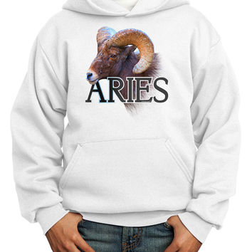 Majestic Aries Picture Youth Hoodie Pullover Sweatshirt