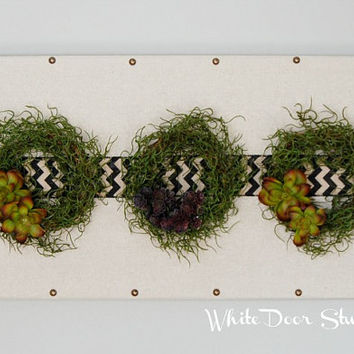 Succulent Wreath Wall Hanging, Unexpected Wall Decor, Greenery Wall Art, Succulent Art, Wall Hanging, Wall Decor