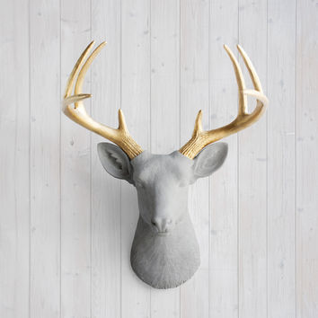 The Virginia Gray Faux Deer Head