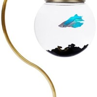 Unique Aquarium - Opulentitems.com