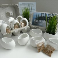 Supermarket - Porcelain Egg Planters, Wheat Grass Kit, Egg Sprouts Set of 6 from Revisions Design Studio