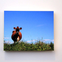 Brown Cow, Field, Farm Scene, Fine Art Photography, 8X10 Wood Panel, Rural Wall Art, Shelf Art, Ready to Hang, Landscape