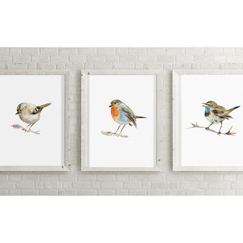 Set of 3 Birds watercolor paintings  - Giclee Art print - Gold Crest Bluethroat Robin painting - Watercolor Animal A4 or 8 x 10 inches